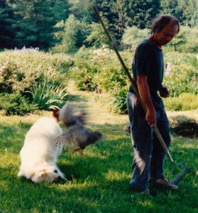 Commit...and Let Go! The Dog, The Rooster, and My Father